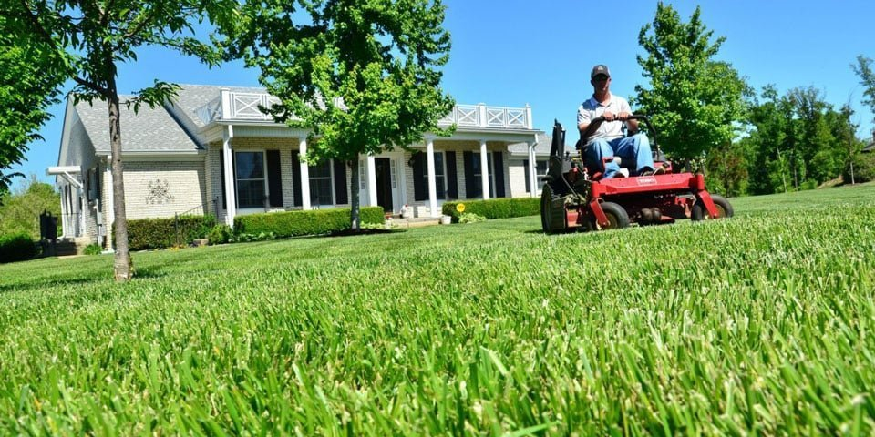 Lawncare And It's Impact On Home Values